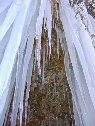 Eisige Schönheit - frozen beauty