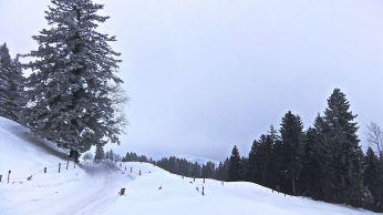 On the second day of traversing a mountainous section of the trail, I chose a less adventurous route. - Auf der zweiten Bergetappe meiner Reise wählte ich eine weniger abenteuerliche Route: Von Schwyz ging es über den Sattel, durch das Hochmoor bei Rothenturm, und über den Chatzenstrick. Leider hat die Sonne die stimmungsvolle Landschaft nicht mit ihren Strahlen berührt.