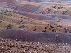 Ile de Maurice - Terre des sept couleurs