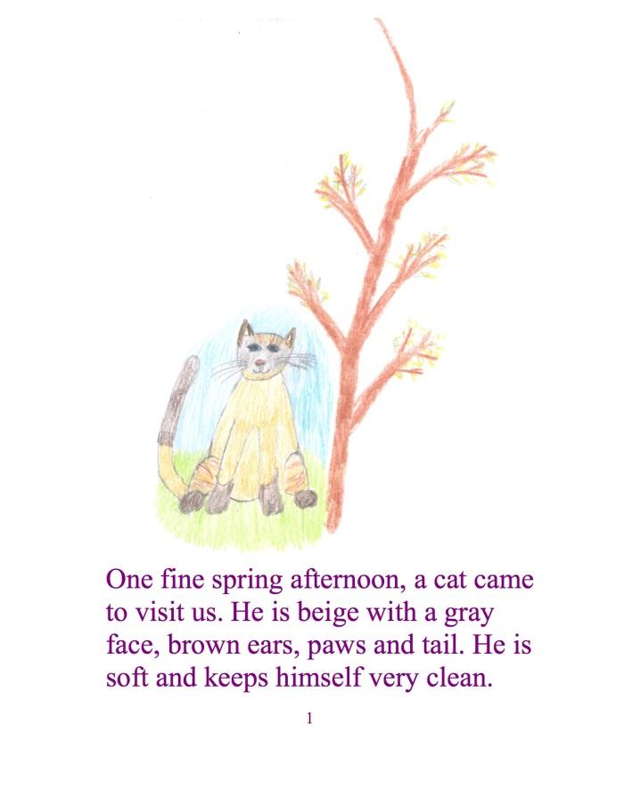 An einem schönen Frühlingsnachmittag kam uns eine Katze besuchen. Er war beige mit einen grauen Gesicht, braunen Ohren, Pfoten, und Schwanz. Er ist weich und hält sich sehr rein.