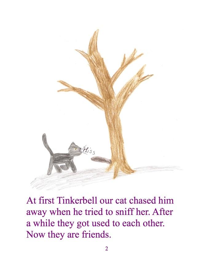 Unsere Katze Tinkerbell jagte ihn erst weg als er versuchte sie zu beschnuppern. Nach einer Weile gewähnten sie sich aneinander. Jetzt sind sie Freunde.