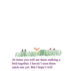 Manchmal kannst du beobachten wie die beiden einem Vogel auflauern. Ich habe noch nie gesehen wie sie einen fangen. Doch ich hoffe ich werde es.