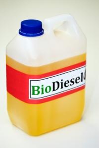 154891-283x424-biodieseljug